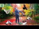 ВЛОГ ВАНЯ НА ПРОГУЛКЕ КОРМИМ ГОЛУБЕЙ Катаемся на самокате Видео для детей Little Man Video for kids