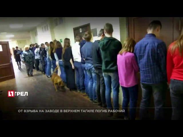Сестрорецких школьников поставили лицом к стене в ходе антинаркотической опера...