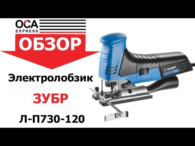 ЭЛЕКТРОЛОБЗИК ЗУБР Л-П730-120Л-П730-120, ПРОФЕССИОНАЛ