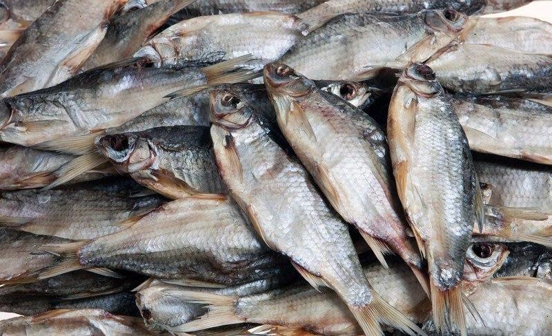 В одном из магазинов Ростовской области пивной магазин оштрафовали за рыбу без документов