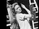Brigitte Bardot Hair