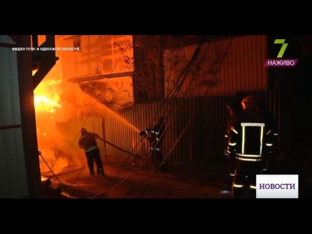 Большой пожар на Даче Ковалевского: есть пострадавшие