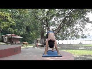 yogi dinesh chandra