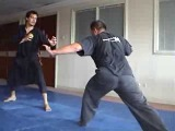 Silat Harimau in Indonesia and Austria
