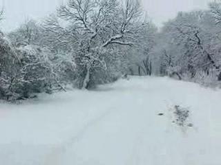 Дорога в Амвросиевку_1