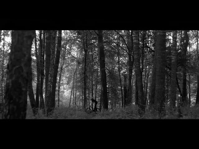Woods   Arseniy Poddubniy