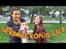 Sevimli Köpüş Lili ile Parkta oynadık ama Tavşanımı aldı - Eğlenceli Çocuk Videosu Funny Kids Videos