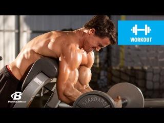 Arm Annihilation Workout   MFT28: Greg Plitt's 4-Week Military Fitness Training Program