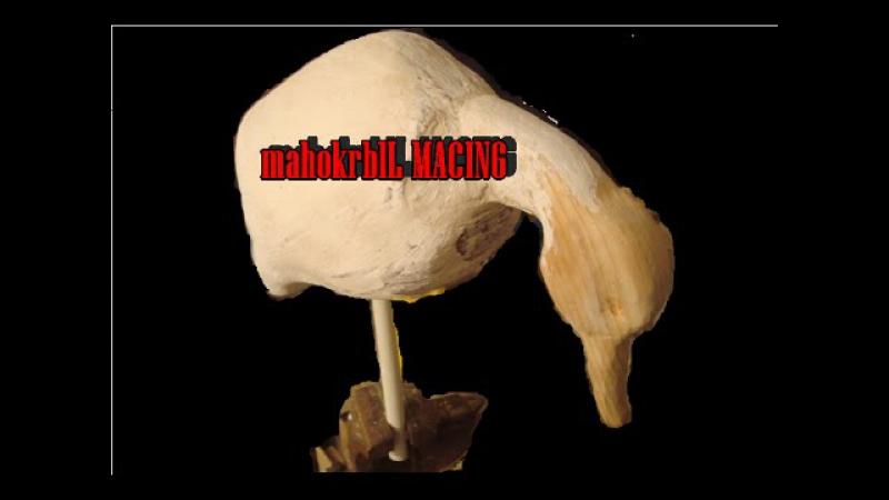 Махокрыл утки крутящий от ветра часть 1 корпус голова СВОИМИ РУКАМИ