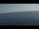 Somali Pirates VS Ships Private Security Guards HD, 1280x720