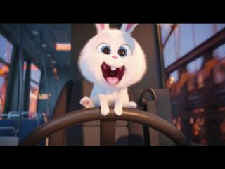 Clip On Film | Клип На Фильм - Тайная жизнь домашних животных
