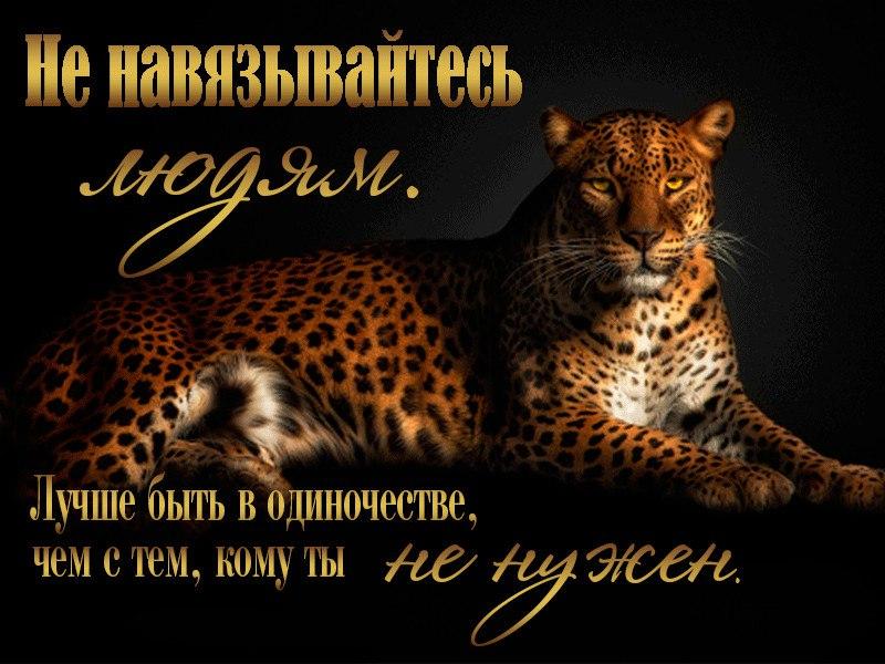 Оля Навгородцева, Макинск - фото №24