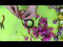 Số 35- Trang Suchin hướng dẫm làm hoa mai đào đón Tết 2017
