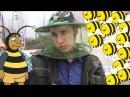 NeNews Фестиваль меду