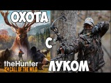 TheHunter: Call of the Wild - Охота с луком
