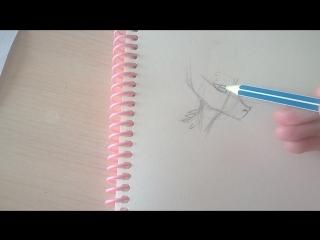 Как рисовать мордочку драконов)))