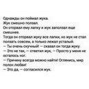 Антон Ермолаев фото #24