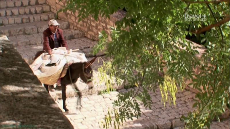 «О чём не напишут в путеводителе (39). Тунис» (Реальное ТВ, путешествие)