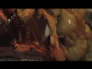 Подполье 3: Покаяние (2007) HD скандальный фильм