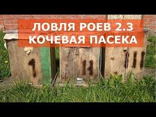 ЛОВЛЯ РОЕВ 2.3 - ЛОВЛЯ БРОДЯЧИХ РОЕВ