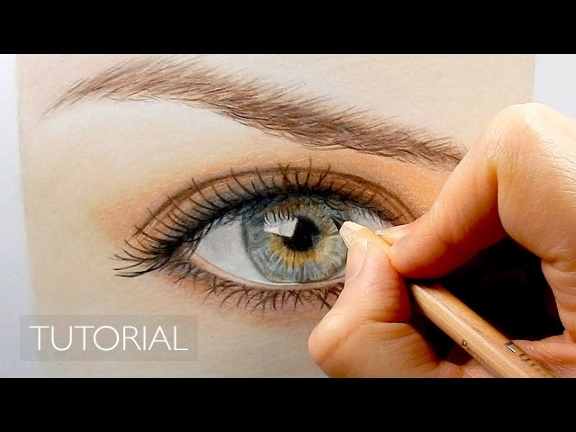 Tutorial | How to draw color a realistic eye and eyebrow with colored pencils | Emmy Kalia