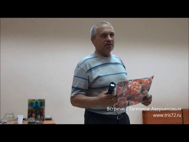 Евгений Аверьянов - Стволовые клетки