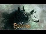 Bucovina - Playlist - Romanian Folk Metal