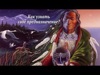 Уроки практического шаманизма от шаманки Аллы Громовой. Как узнать своё предназначение