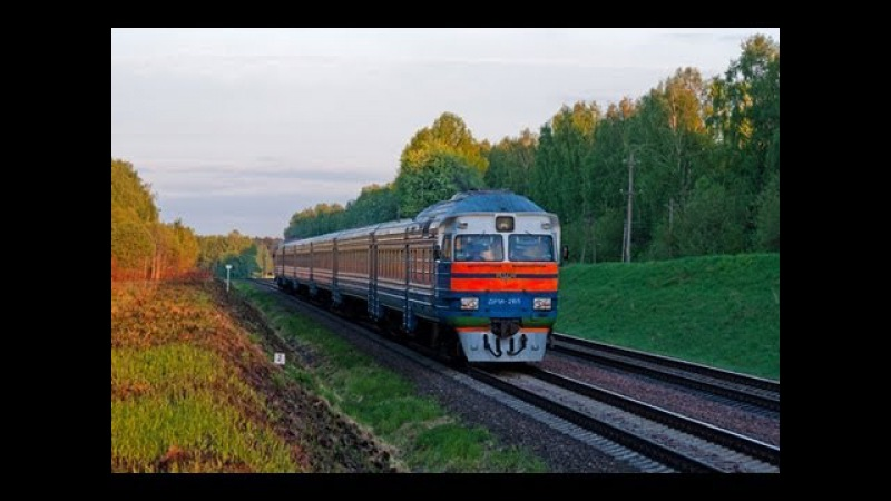 Дизель поезда ДР1А и ДР1П DR1A and DR1P DMU trains BCh Ashmyany