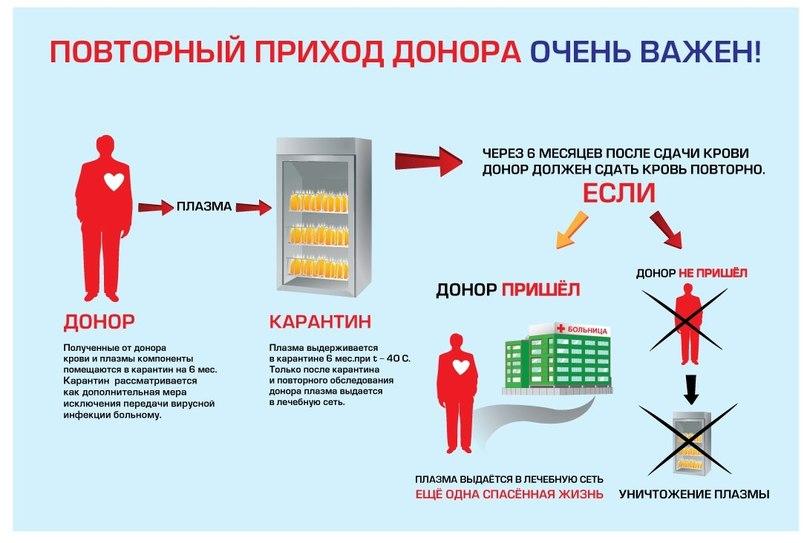 Польза от донорства крови для донора