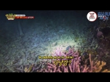 160624 Laws of the Jungle Papua New Guinea 219. B