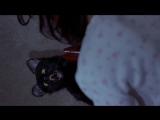 Очень страшное кино 2 - Синди против кошки