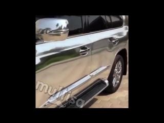 Lexus (multisa)