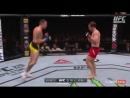 UFC Fight Night - 107 PICKETT vs VERA обзор боя