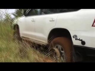 Полезная_лебедка_для_автомобиляPARTY_HARD__gif_amp;_video_113