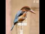 Vega Z - Pleasure 107 (28-07-2016)