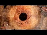 Vadim Spark &amp Dennis Graft - Spells Attila Syah Remix)