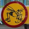 Уничтожение насекомых и грызунов в Ульяновске