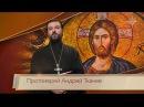 Евангелие дня: Христос-Камень, Притча о винограднике