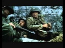 72nd anniversary of D-Day prompted me to post the Normandy Beach scene in Saving Private Ryan. I remember first seeing this in t
