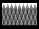 Обман зрения. Зрительная иллюзия