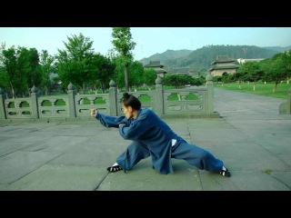 Wu Dang Xuan Zhen Quan -- Zhang Yong 张勇玄真拳