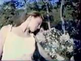 Валерий Залкин - Одинокая ветка Сирени