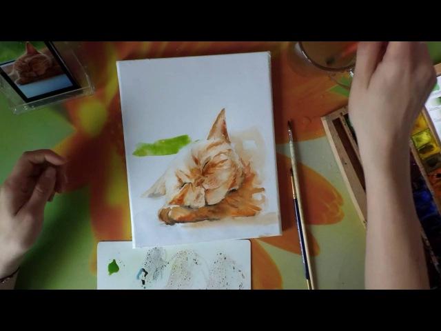 Картина акварелью Сон рыжего кота