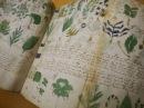 El códice Voynich Documental