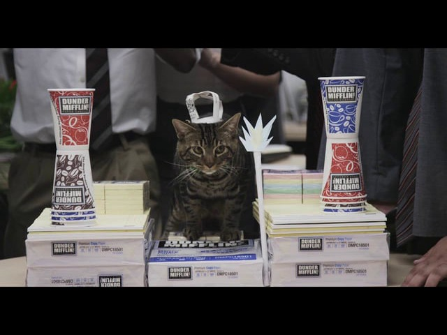 Dunder Mifflin 2013 Super Bowl Commercial: Paper War with Cat
