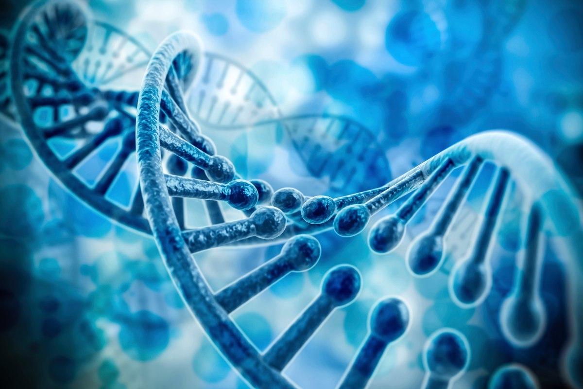 Генетика и фибромиалгия
