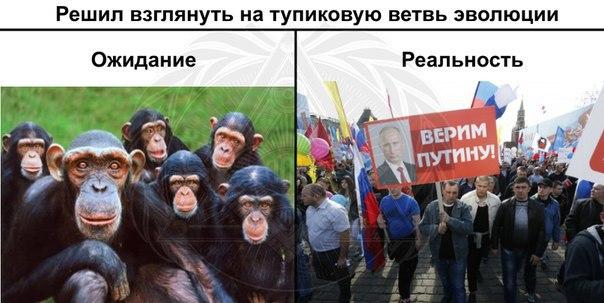 Посольство Украины в Москве забросали файерами и листовками - Цензор.НЕТ 3573