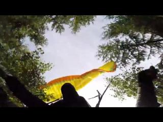 Paragliding tree crash Nova Mentor 3