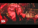 Iggy and the Stooges | I Wanna Be Your Dog | Live in Sydney